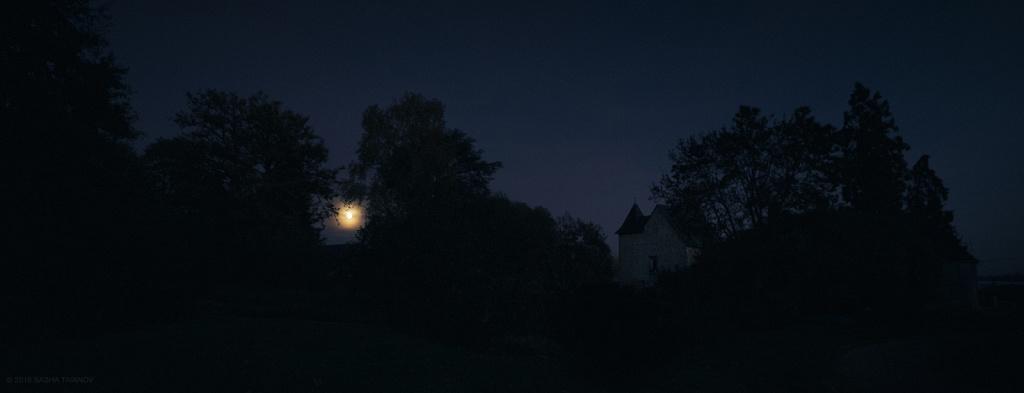Лунная ночь в доме у леса